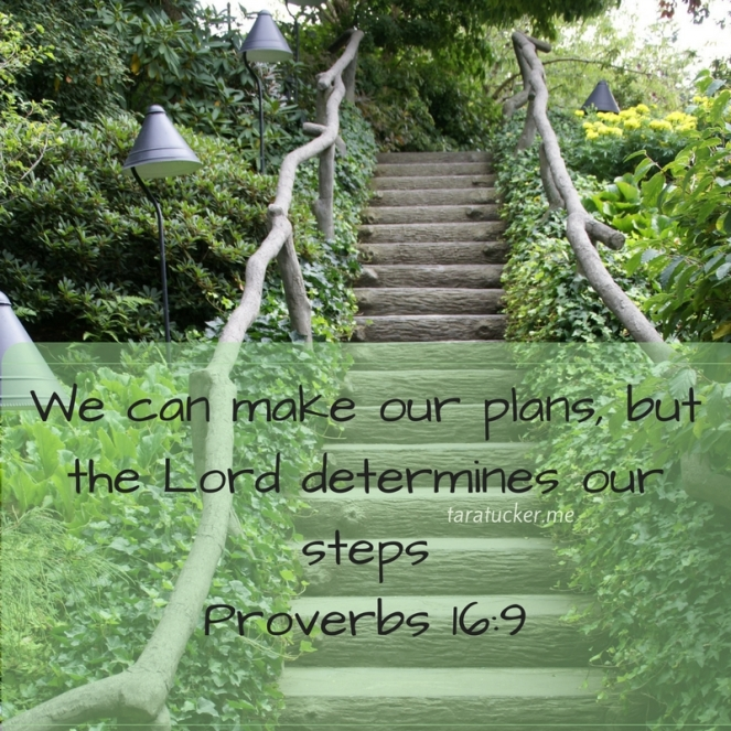 we can make our plans but the Lord determines our steps
